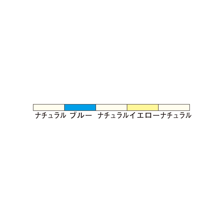 <span>プロテウス マーカー磯 本流<br>【ナイロン / 平行巻】</span>